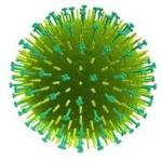 Epidemia de Gripe en España en 2013