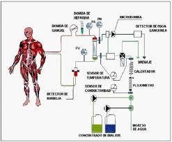 La Hemodiafiltración Online reduce la mortalidad de los pacientes con insuficiencia renal