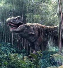 Se encuentran en Venezuela fósiles de 34 especies con tres millones de años de antigüedad