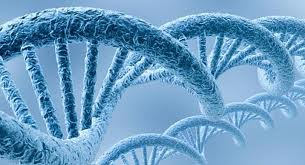Myriad Genetics pretende cobrar más de 3000 dólares por un test genético para detectar cáncer