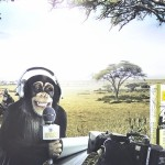 ¿Racista un anuncio con monos?