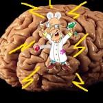 Los psicobióticos y la salud mental